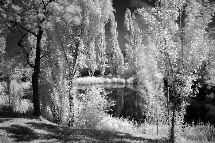 Relaxing Trieste Reflection Blak And White Bwn Infrared Infrared Photography Laghetto