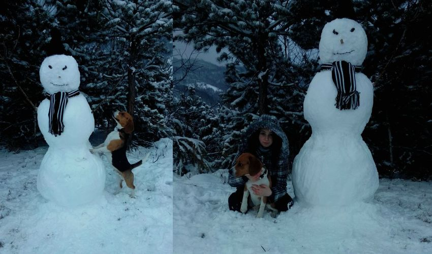 First Snow 2015🎁🎉 Dog Obby Winter Snowman Cold Nature Lovely Day