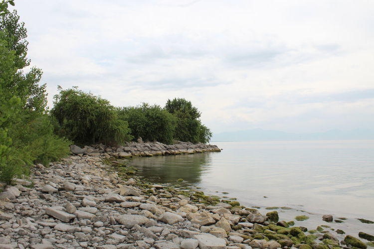 Cloudy Cloudy Day Beauty In Nature Cloud - Sky Day Lakeshore Moss Nature No People Outdoors Plant Sky Stone Tranquil Scene Tranquility Tree Treeline Utah Lake Water
