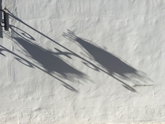 Shadow No People Sunlight High Angle View Nature Still Life Day Shadow No People Sunlight High Angle View Nature Still Life Day White Color Close-up Pattern