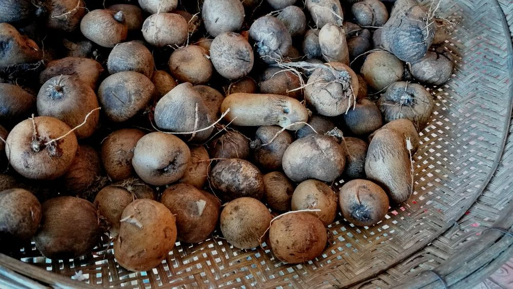 Taro Root Stack Large Group Of Objects Abundance Heap Log No People Full Frame