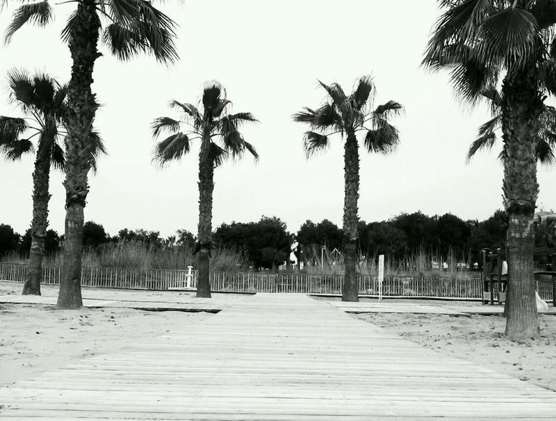 From a beach in Spain, what a great holiday, comments?!? <3 x Holiday SPAIN Blackandwhite Beach