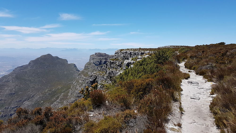 Hiking Trail Mountain Beauty In Creation  God's Glory On Display  Western Cape Breathtaking Panorama Cape Town, South Africa South Africa 🇿🇦 Backgrounds Mountain Vegetation Beauty In Nature Amazing Design Mountain Range Looking Down!