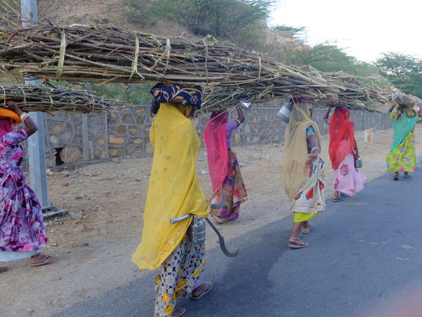 Clothesline Clothing INDIA Holiday Multi Colored Real People Sari Traditional Clothing Working Women