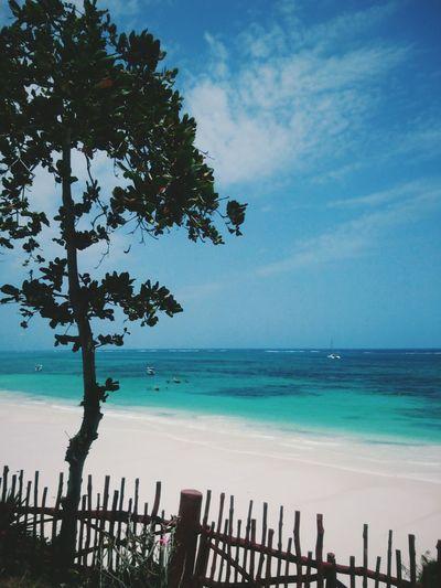 Paradise. Diani Beach, Ukunda, Kenya. Horizon Over Water Beach Nature Sky Travel Destinations Seascape Travel Beauty In Nature VSCO Kenya Africa EyeEm Best Edits EyeEm Best Shots Landscape Minimal Ocean View Summer