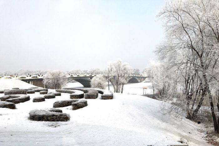 松花江上 Winter 太阳岛 哈尔滨
