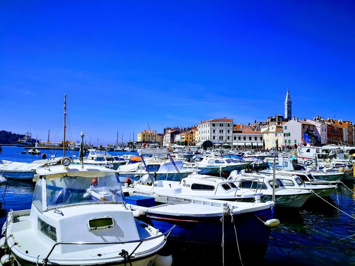 Harbor Travel Destinations Tranquil Scene Rovinj Yachting Nautical Vessel Yacht Water Sailing Ship Harbor Sea Moored Blue Clear Sky Marina Sailboat Fishing Boat Sailing Boat Bay Of Water Water Vehicle Recreational Boat Passenger Ship Dock Port Motorboat