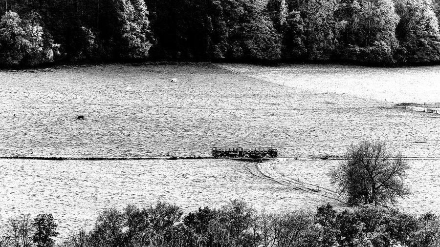 Belgium Black & White Han-sur-lesse Landscape Outdoors Scenics Truck Valley