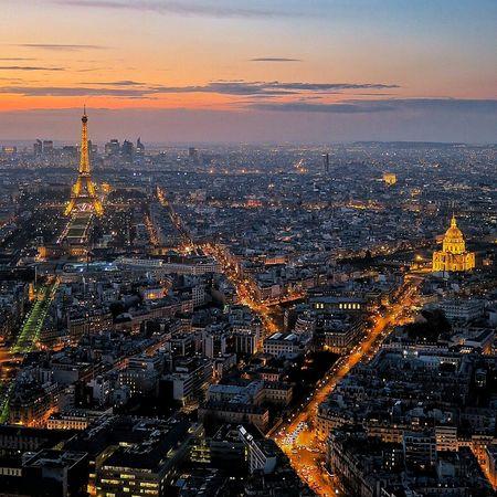 Paris Night Market Reviewers' Top Picks