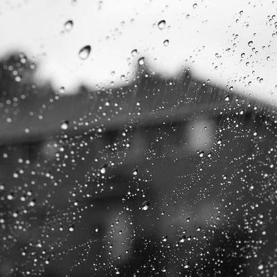 Ottawa 613 Merivale Ontario canada city rain rainyday water blackandwhite blackandwhitephotography monochrome monochromephotography instablackandwhite instagood photo instalove beautiful photogram instagram