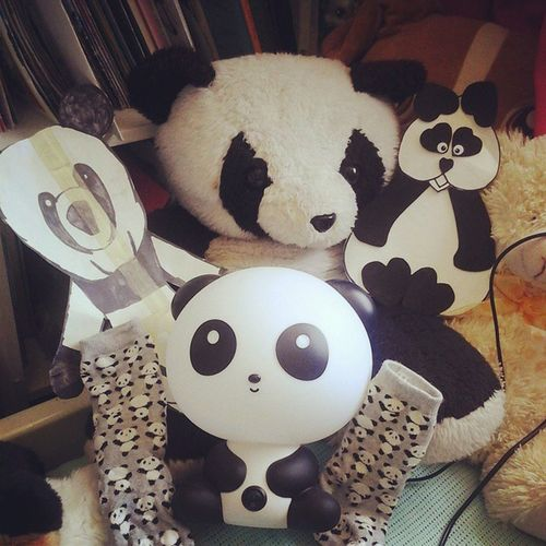 It's another Pandaday