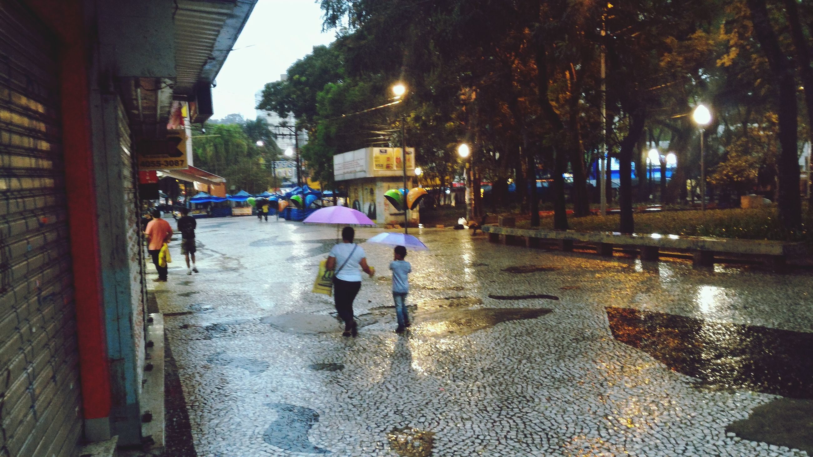 street, wet, walking, real people, rain, tree, outdoors, rainy season, city, road, women, men, building exterior, architecture, day, water, nature, adult, people, adults only