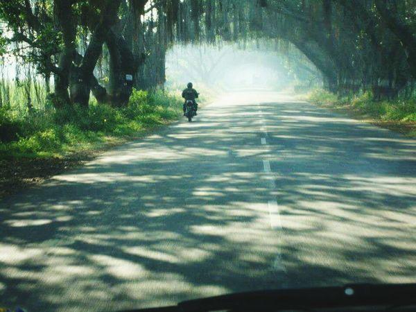 Roadtrip Green Road