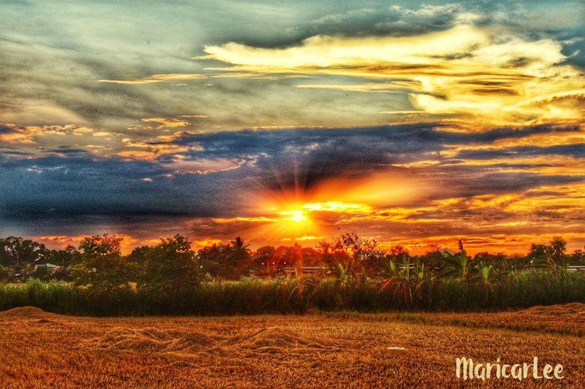 Sunset Sunset Sky Cloud - Sky Beauty In Nature Scenics - Nature Orange Color Tranquil Scene