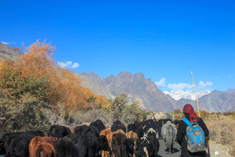 Photo taken in Leh, India