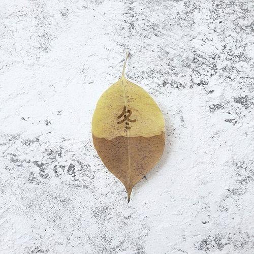 美好的時光 特別喜歡冬天里感受到的溫暖 是特別暖。