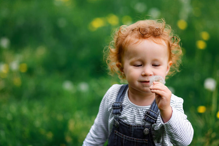 close up portrait of cute little girl with white dandelion