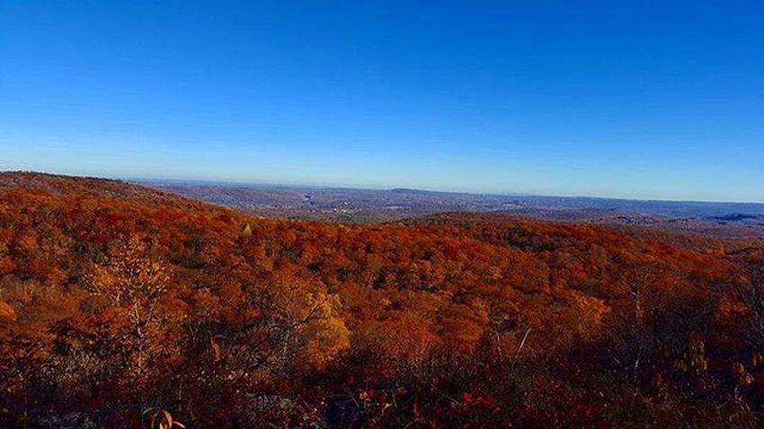 Landscapes Kelleymediaproductions Nature Trees Naturephotography Hiking Hikingphotography Color Colorphotography Photography Photographersofinstagram Canon Canonphotography Stayrad