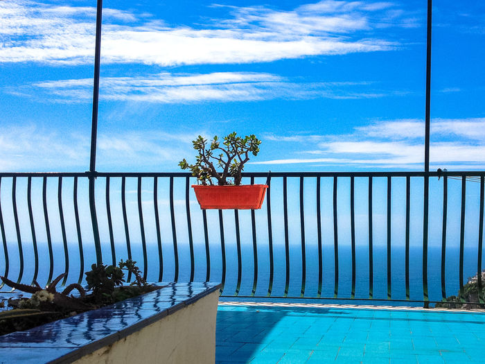 Positano Italy Beauty In Nature Cloud - Sky Day Flower Growth Horizon Over Water Italy❤️ Nature No People Outdoors Plant Red Sea Sky