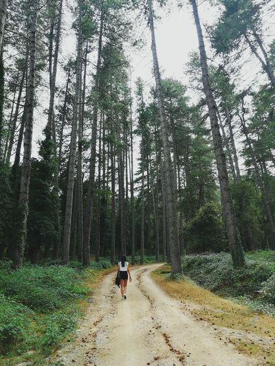 taking a walk on the wild side Me EyeEmNewHere EyeEm Selects #Adventure Sardinia Landscape Trees Profondità Simmetry Tree Forest Full Length Headwear Sky Woods
