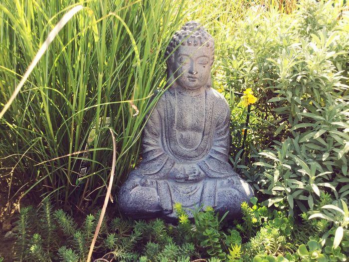 Repos  Tranquility Zen Jardin Vert Plante Bouda Sculpture Statue Human Representation Representation Male Likeness Plant Art And Craft