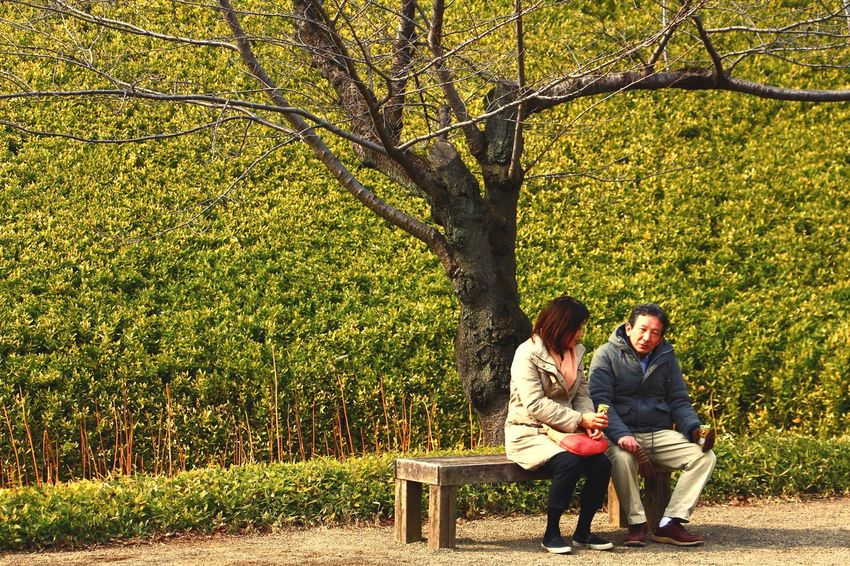 a walk in Koishikawa Gardens in Tokyo Tokyo Japan Garden Bamboo Bamboo Grove Bench Park Two People Tree Togetherness Park - Man Made Space Day Adult People Men Outdoors Full Length Adults Only Couple - Relationship Dating Young Adult Sitting Bonding Friendship Grass This Is Family