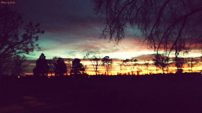 EyeEm x WhiteWall: Landscapes