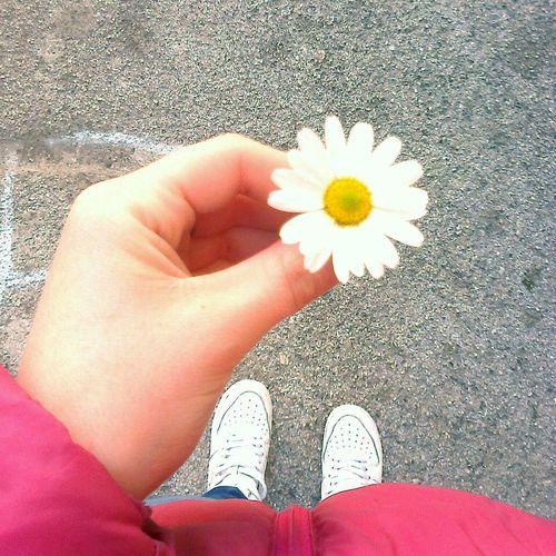Cosi' semplici, cosi' complicate! Delicatezza Purezza Bianco White sei un piccolo fiore per me *