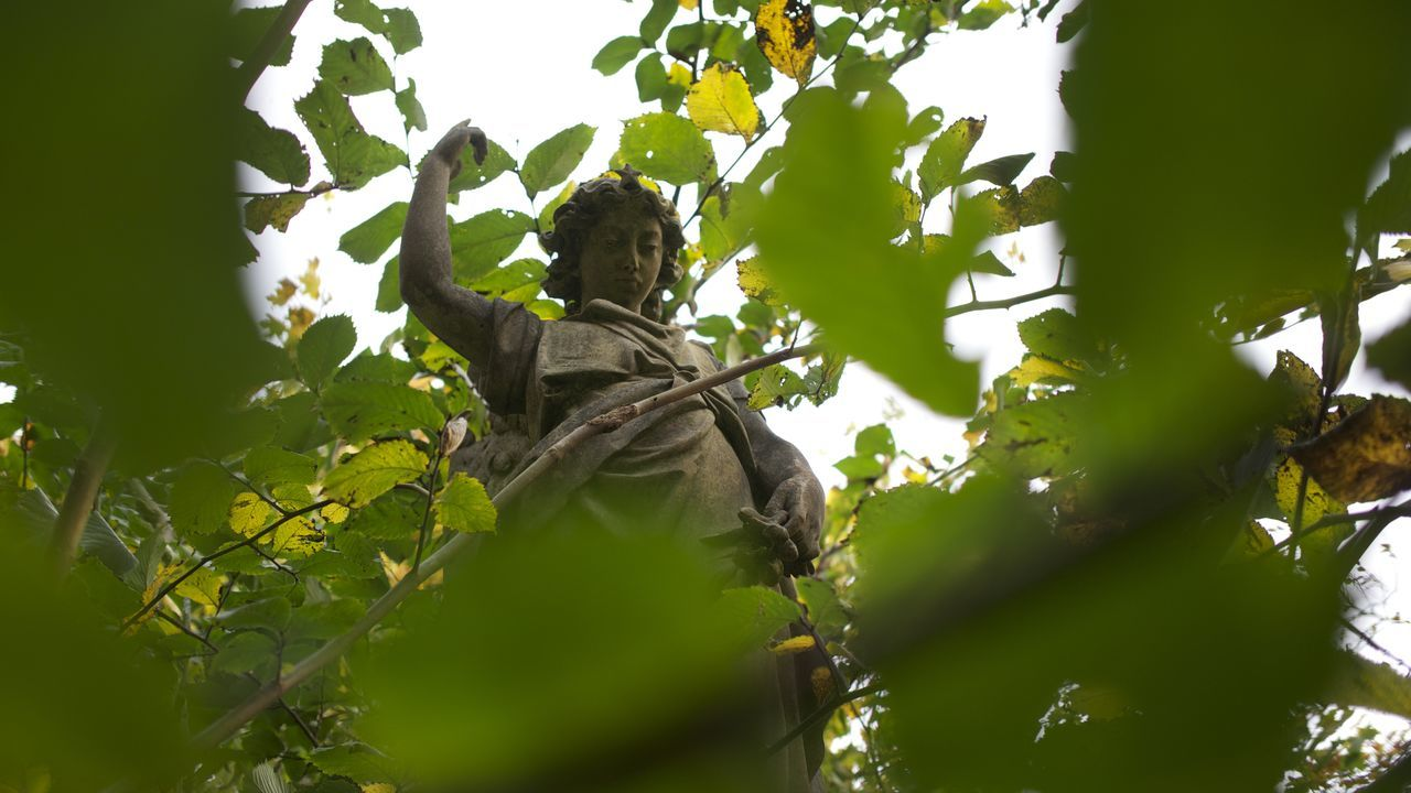 statue, low angle view, tree, human representation, male likeness, sculpture, green color, leaf, branch, growth, day, outdoors, no people, sky, nature