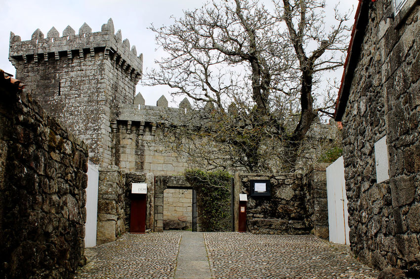 Architecture Building Exterior Built Structure Castle Day Fort Historical Building History Architecture History Place Mistery Atmosphere Old Castle Old Castle Walls Stone Walls Tower Tree