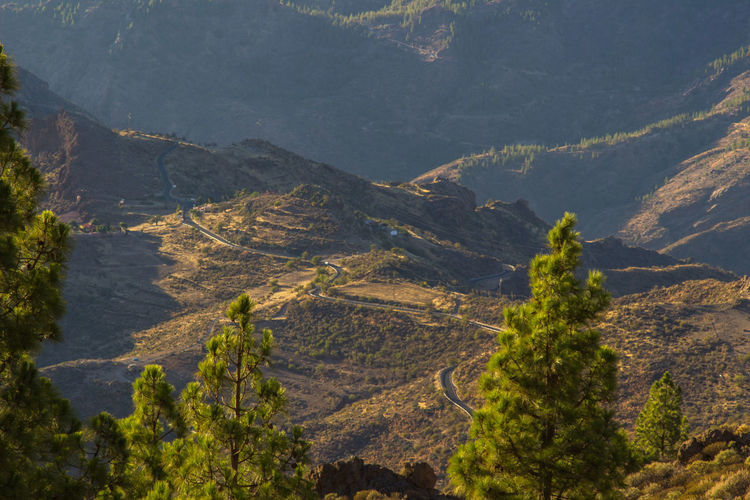 Beautiful Nature Canary Islands Gran Canaria Gran Canary Island Nature Perspectives On Nature Landscape Landscapes Curvy Road