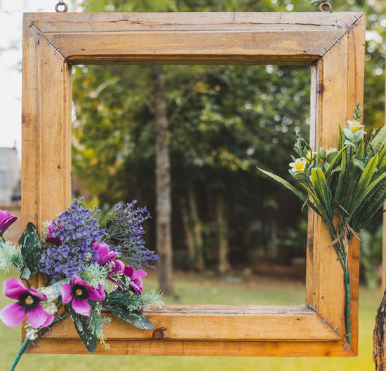 frame, decorated with flowers, hanging on a branch on green background. Plant Flower Flowering Plant Beauty In Nature Wood - Material Nature Focus On Foreground No People Freshness Day Fragility Growth Vulnerability  Close-up Window Outdoors Vase Plant Part Transparent Flower Head Flower Pot Frame