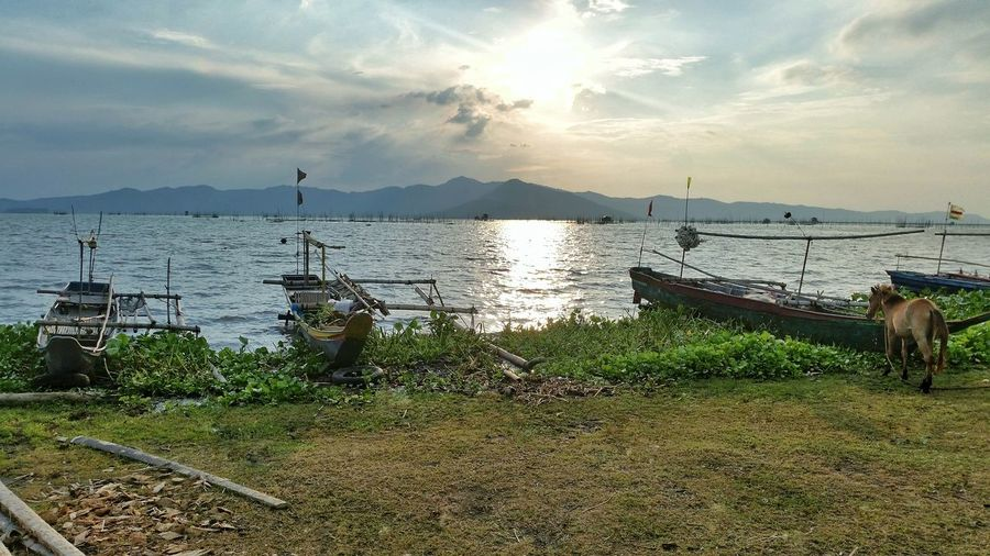 Water Nautical Vessel Sky Nature Cloud - Sky Sea Mode Of Transport Beauty In Nature Outdoors No People Scenics Tree Day Mountain Horse Philippines Rizal Philippines Jalajala