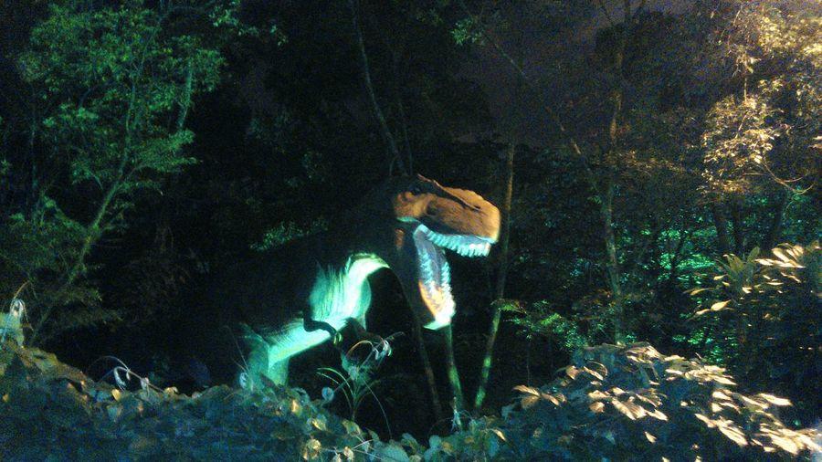 Jurassik park! Animal Themes Extinct Animals In The Wild Petlove  Petlovers