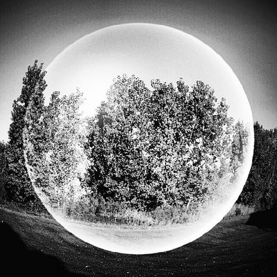 Foliage Bubble Month_OMonochrome