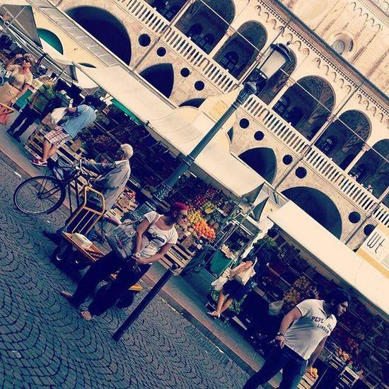 Padova Italy Veneto Padua Mercatodellafruttaedellaverdura Volgoveneto Volgopadova Palazzodellaragionepadova Ynot Ynotbag Borsaynot Volgoitalia Visitpadova Visititaly 100ita Through_italy Igerspadova Liveloveitalia Top_italia_photo MadeinItaly Loves_madeinitaly Igersitalia Igersveneto Loves_veneto Loves_padova love_veneto wonderful_italy bestitaliapics loves_united_italia italystyle
