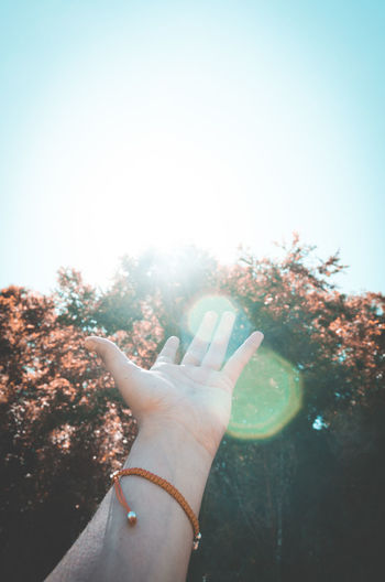 Cropped hand gesturing against tree on sunny day