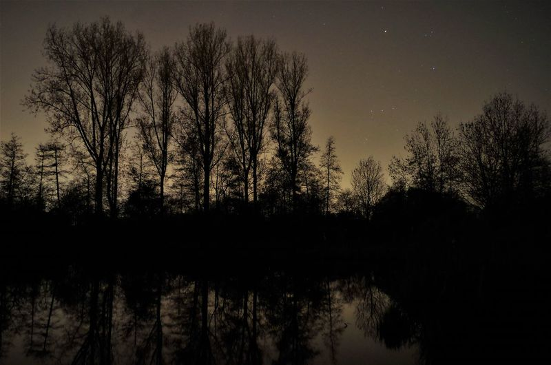 One night in the park. Astronomy Bare Tree Beauty In Nature Lake Nature Night No People Outdoors Reflection Scenics Silhouette Sky Tranquil Scene Tranquility Tree Water