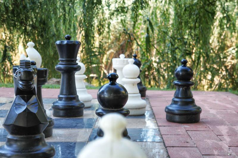 Large chess pieces against plants