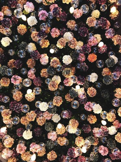 Sky flower Full Frame Backgrounds Pattern No People Large Group Of Objects Abundance Indoors  Sunlight Sequin Textured  Multi Colored Floral Pattern Directly Above Shiny Nature Repetition Close-up Day Textile Design