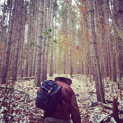 Shinrun yoku Forestbathing Shinrun Yoku Forest Bathing Real People Lifestyles Tree Leisure Activity One Person Day Men Nature Rear View Forest Winter Outdoors Snow Beauty In Nature