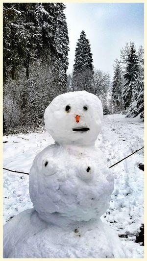 Schneefrau Schneemann Schnee Schneefrau Snow Snow ❄ Snowman Snowwoman Fun
