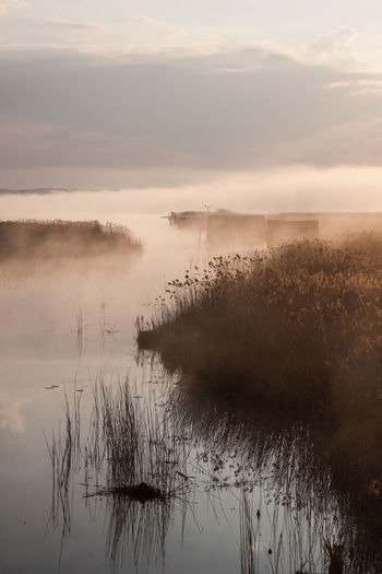 Federsee Beauty In Nature Day Fog Grass Hazy  Lake Landscape Mist Nature No People Outdoors Reflection Scenics Sky Sunset Tranquil Scene Tranquility Water
