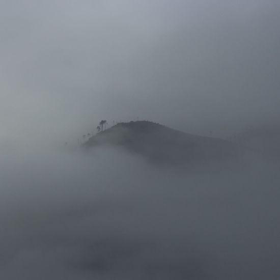 Fog Humpback Whale UnderSea Sky