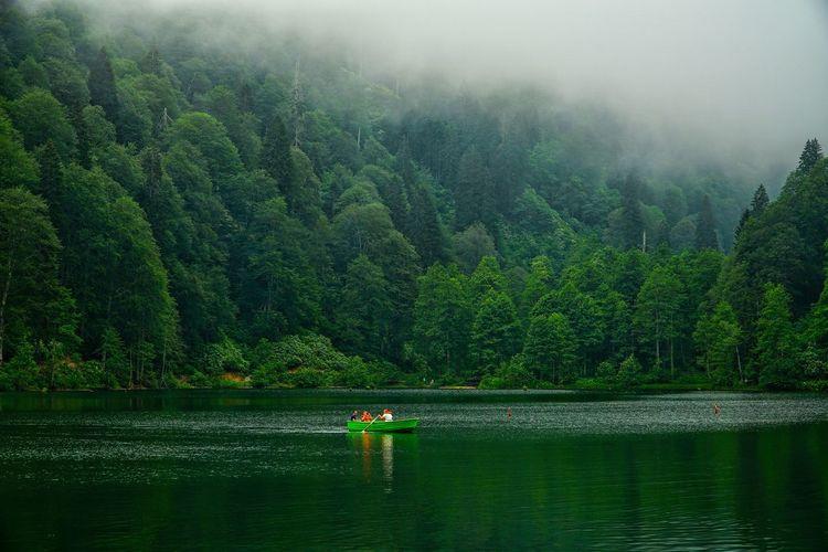 Turkey Türkiye Türkei Artvin Borçka Karagöl Borçka Karagöl Lake Fog Foggy Day Foggy Landscape Foggy Lake Landscape Landscape_photography Nature Water Green Color Tree Outdoors Relaxing Trekking Adventure Yayla