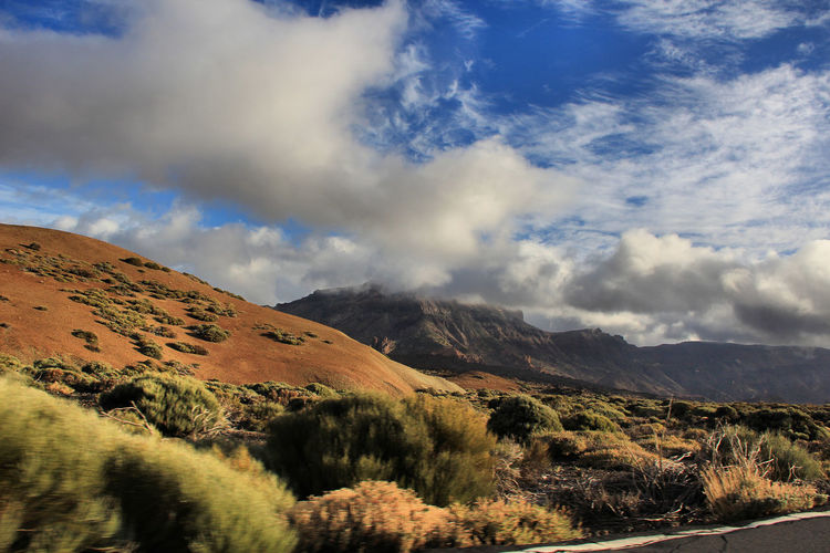 Beauty In Nature Canadas Del Teide Cloud - Sky Day Desert Landscape Landscape Mountain Mountain Range Nature No People Outdoors Scenics Sky Teide Teide National Park Tenerife Tranquil Scene Tranquility Tree