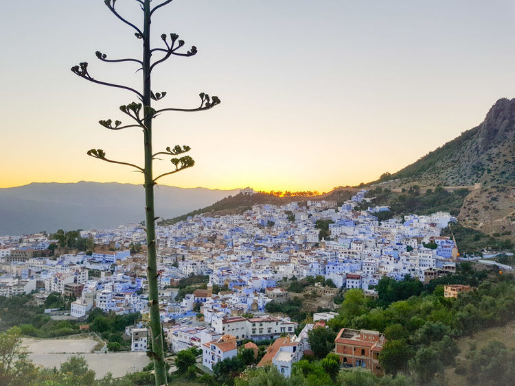 Atardecer Sunset Chefchaouen Chaouen Horizonte Horzon Morocco Riff Montain Riff Mountain Landscape Tree Scenics Nature Sunset Outdoors Mountain Range No People Day Sky Beauty In Nature