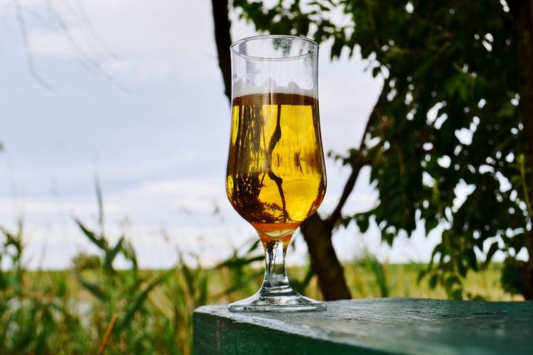Beer glass on table in yard