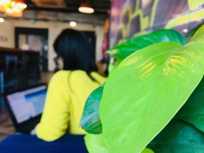 peekaboo Indoors  One Person Incidental People Real People Focus On Foreground Lifestyles Close-up Women Sitting Day Yellow Unrecognizable Person Green Color First Eyeem Photo