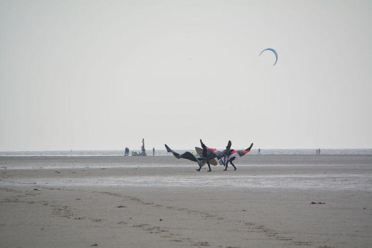 Paragliders landing at beach against sky